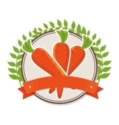 carrot fresh farm product vector image