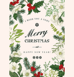 christmas botanical card vector image
