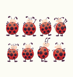 Cute ladybugs with different facial expressions vector
