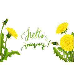 Dandelion banner hello summer lettering vector