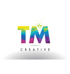 Tm t m colorful letter origami triangles design vector