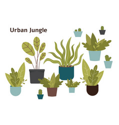 Urban jungle - hand drawn home plant set isolated vector