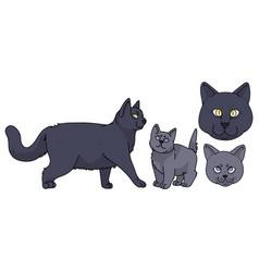 Cute cartoon british shorthair cat and kitten vector