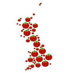 Great britain map composition of tomato vector
