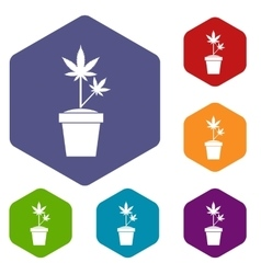 Hemp in pot icons set vector