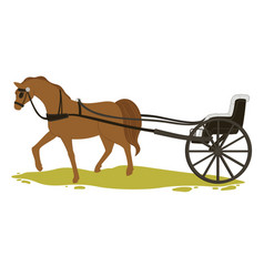 horse transport in ancient times vintage carriage vector image