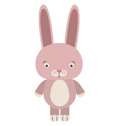 pink bunny on white background vector image