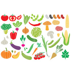 vegetables icons collection vector image