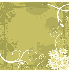 Chamomile Background vector image vector image