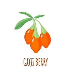 Goji berry icon in flat style on white background vector image