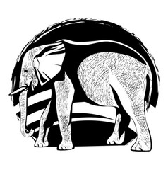 silhouette of an elephant with the skin texture vector image vector image