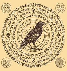 Banner with hand-drawn raven and magical runes vector