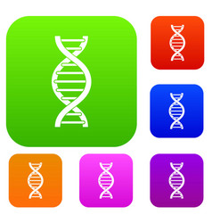 dna spiral set color collection vector image