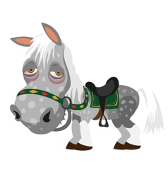 Gray spotted horse animal cartoon style vector image