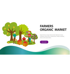 Harvesting picking fruits horizontal banner vector