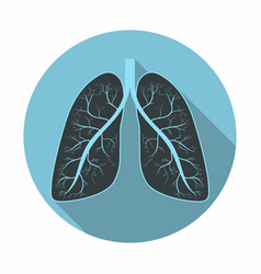 lungs human lungs anatomy symbol with shadow flat vector image