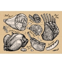 Meat butcher shop hand drawn sketches of food vector