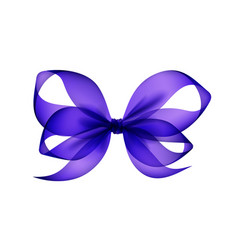 purple bow top view close up on background vector image