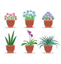 Room plants in clay pots for interior design decor vector