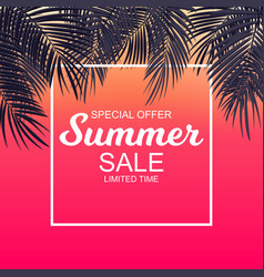 Summer sale concept background with palm leaves vector