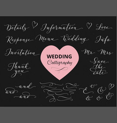 Wedding hand written calligraphy set isolated vector
