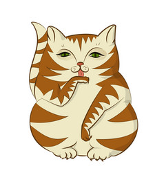 a big cat washes funny and cute character kitty vector image
