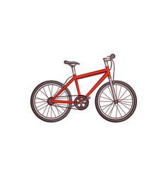 flat sketch detailed modern bicycle bike vector image