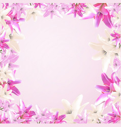 frame garden and wild lily vector image