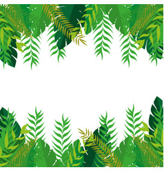 frame with green leaves nature design vector image