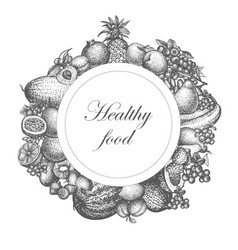 sketch hand drawn fruit nutrition vector image