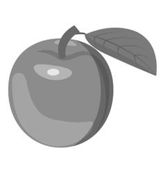 Apricot icon gray monochrome style vector