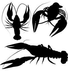 Crawfish crayfish silhouettes isolated on white vector
