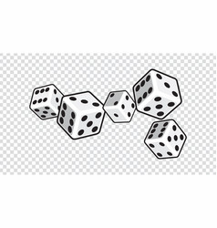 five white dices isolated on transparent vector image