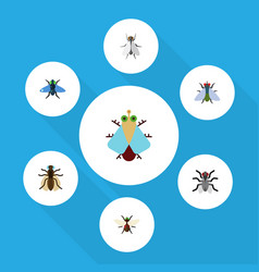 Flat icon fly set of bluebottle hum tiny and vector
