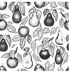 pears and apples seamless pattern hand drawn vector image