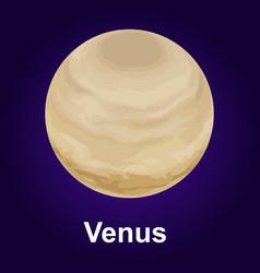venus planet icon isometric style vector image