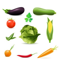 set of icons vegetables vector image