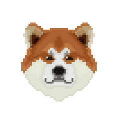 Akita inu dog head in pixel art style vector