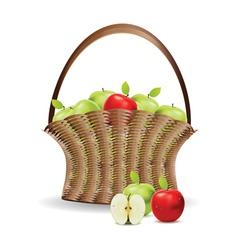 Basket of red and green apples vector image