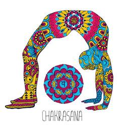 Chakrasana pose in yoga vector