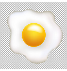 Fried egg isolated vector