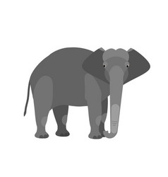 funny adorable cute elephant isolated on white vector image