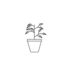 office plant icon vector image