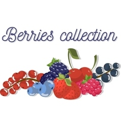 Set three of beautiful flat berries vector image