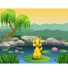 Cute baby duck waving on the lily water vector image vector image