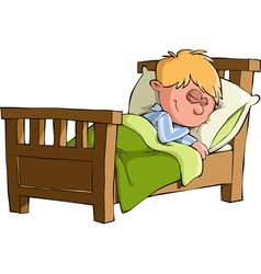 boy sleeps vector image