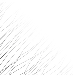 Background with black lines and curves vector