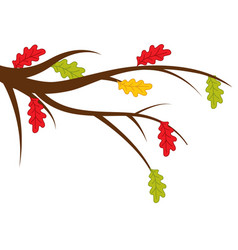 Branch with autumn oak leaves vector
