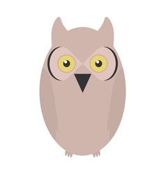 cute owl bird woodland character vector image