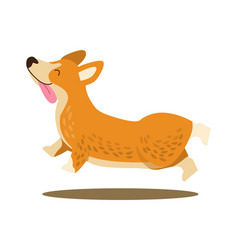 happy playing corgi icon vector image